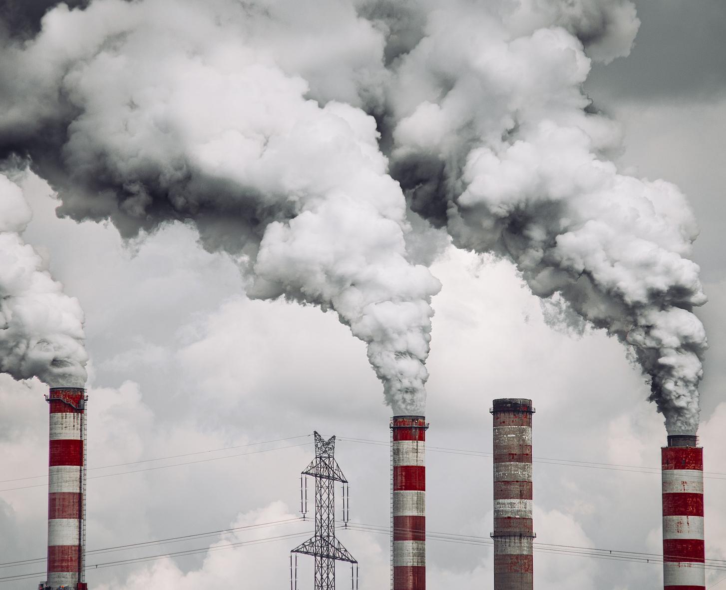 Jak smog wpływa na układ oddechowy?